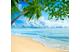 Ardrich_Airomist_Pro_Bahama_Breeze